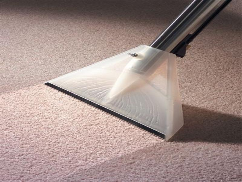 sucking water from carpet with water extraction vapor and showing difference between wet and dry