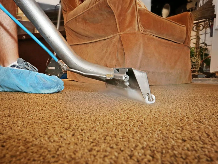 Cleaning rug with steam cleaner and brown sofa is located on back ground