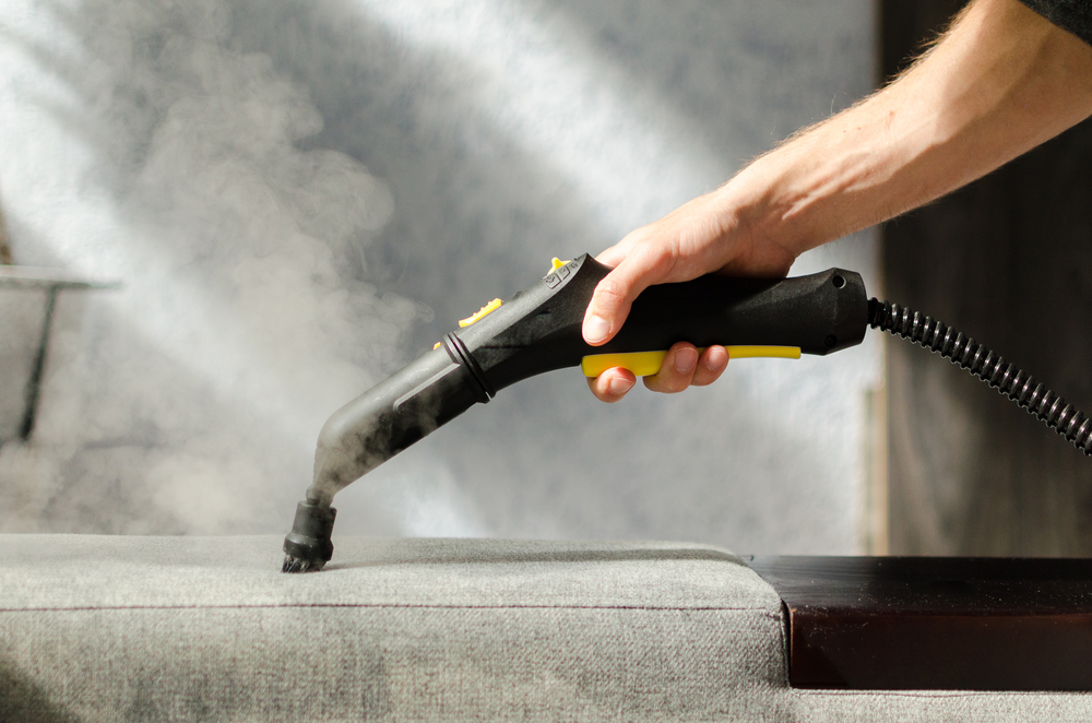 steam cleaning couch base